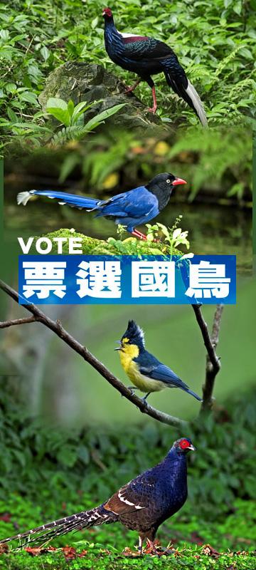 Taiwan National Bird Election